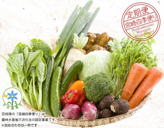 こだわりの野菜詰め合わせ例
